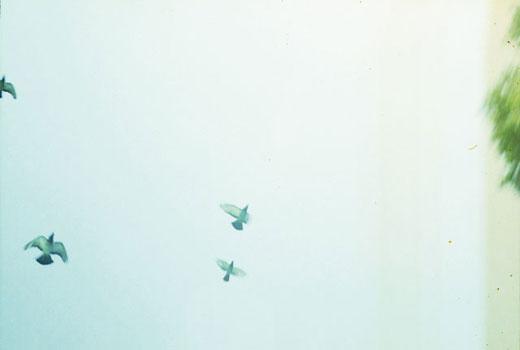 映画「戸ノ岡物語」写真集 lemonade